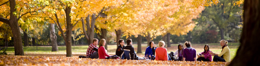 Students in leaves