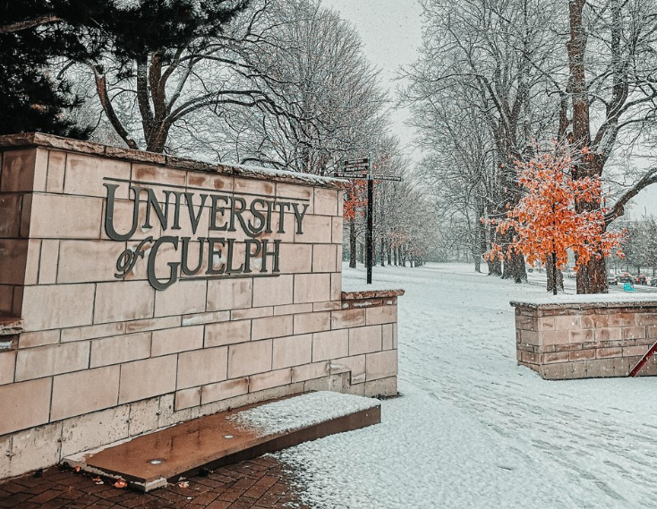 University of Guelph sign with snow