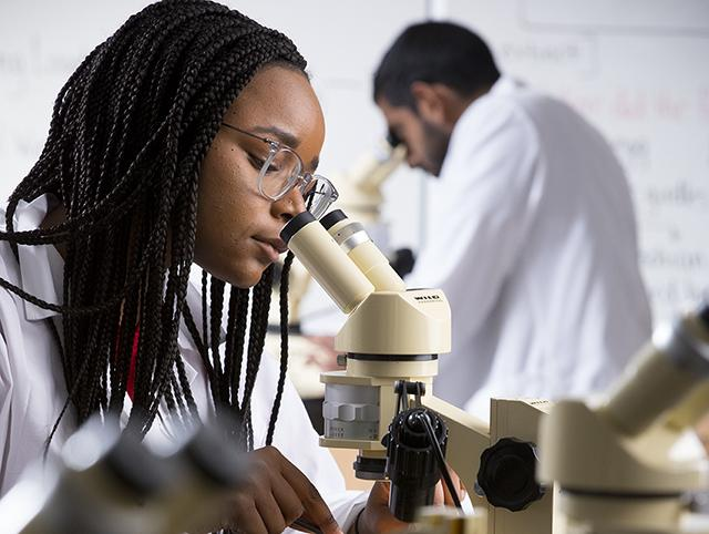 A woman looks through a microscope in a laboratory
