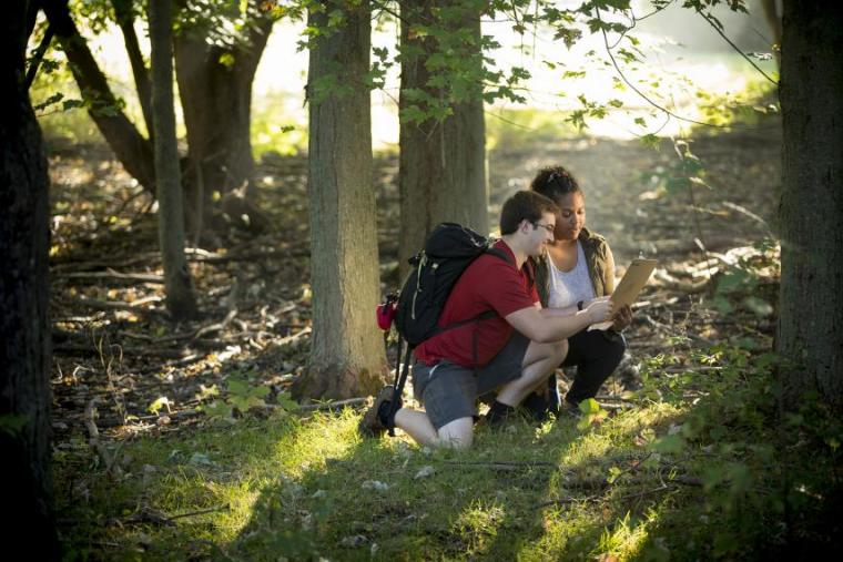 Two students examine flora in a forest.